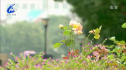 【温视频】本周天气先雨后晴 温度温和上扬