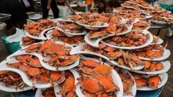 1400只梭子蟹堆成山,这场婚宴场面太壮观!网友:想去随份子